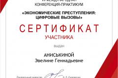 ANIS_KINOJ_E_G_sertifikat_mezh_page-0001